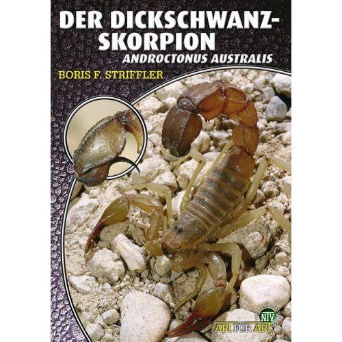 Striffler, Boris F. - Der Dickschwanzskorpion - Preis vom 13.04.2021 04:49:48 h