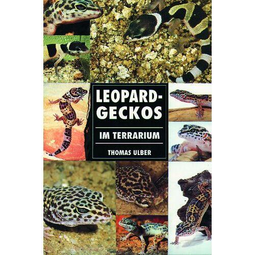 Thomas Ulber - Leopardgeckos im Terrarium - Preis vom 21.10.2020 04:49:09 h