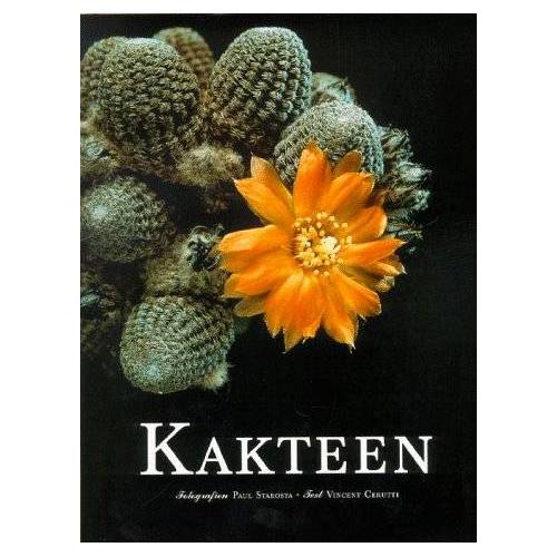 Vincent Kakteen - Preis vom 24.02.2021 06:00:20 h