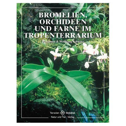Benjamin Schwarz - Bromelien, Orchideen und Farne im Tropenterrarium - Preis vom 05.09.2020 04:49:05 h