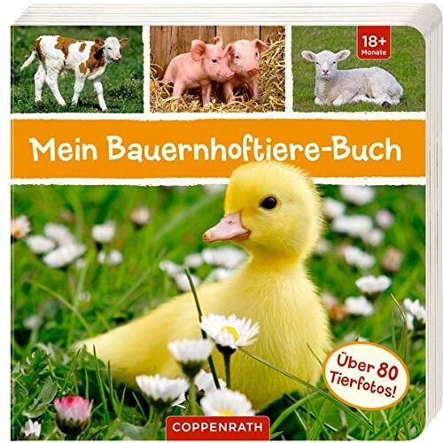 - Mein Bauernhoftiere-Buch - Preis vom 03.12.2020 05:57:36 h