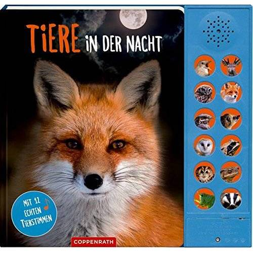 Katja Baier - Tiere in der Nacht: Mit 12 echten Tierstimmen - Preis vom 13.05.2021 04:51:36 h