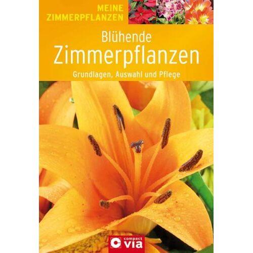 - Blühende Zimmerpflanzen: Grundlagen, Auswahl und Pflege - Preis vom 03.09.2020 04:54:11 h