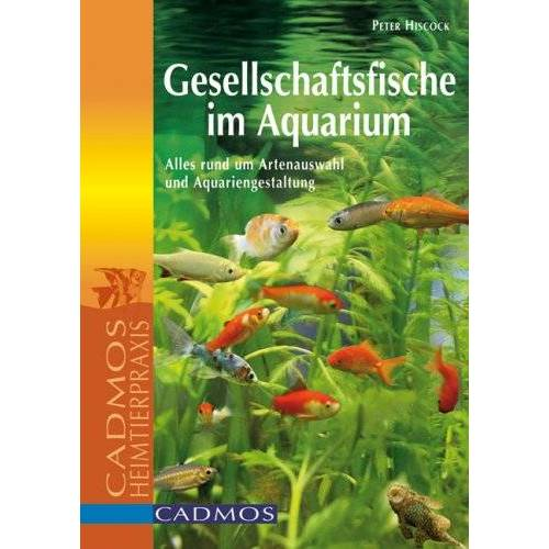 Peter Hiscock - Gesellschaftsfische im Aquarium: Alles rund um Artenauswahl und Aquariengestaltung - Preis vom 05.03.2021 05:56:49 h