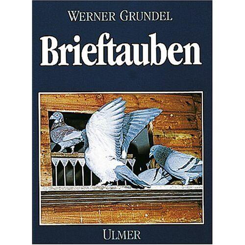 Werner Grundel - Brieftauben - Preis vom 03.05.2021 04:57:00 h