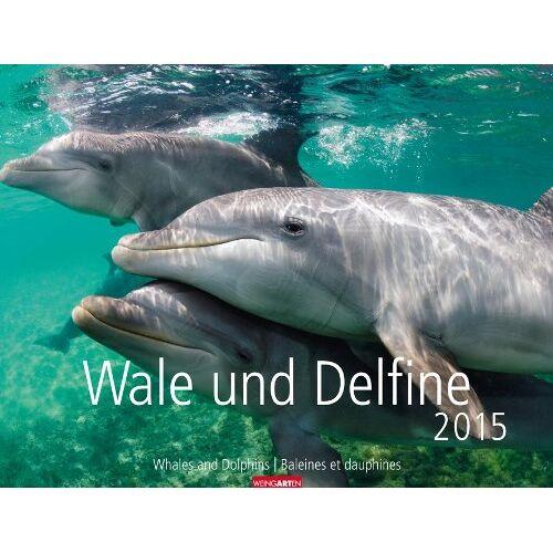 Weingarten - Wale und Delphine 2015 - Preis vom 05.09.2020 04:49:05 h