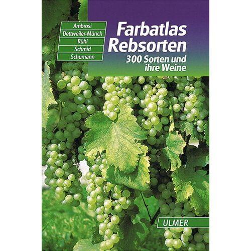Hans Ambrosi - Farbatlas Rebsorten: 300 Sorten und ihre Weine - Preis vom 18.01.2021 06:04:29 h