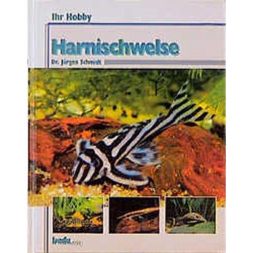 Dr. Jürgen Schmidt - Harnischwelse, Ihr Hobby - Preis vom 24.02.2021 06:00:20 h