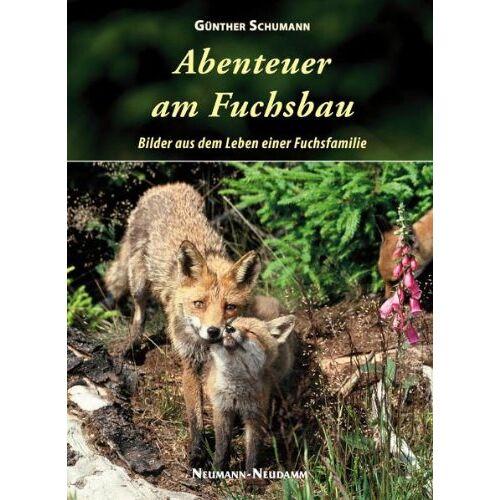 Günther Schumann - Abenteuer am Fuchsbau: Bilder aus dem Leben einer Fuchsfamilie - Preis vom 18.04.2021 04:52:10 h