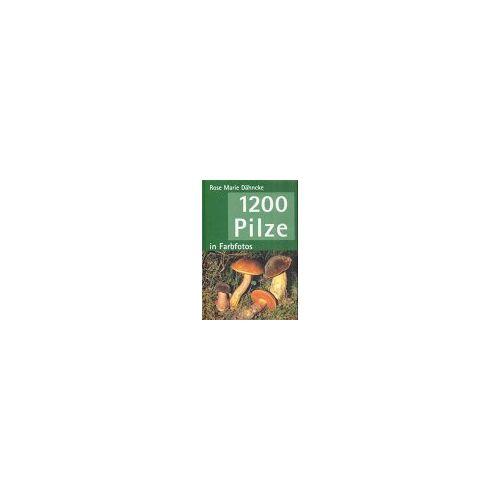 Dähncke, Rose Marie - 1200 Pilze - Preis vom 08.04.2021 04:50:19 h
