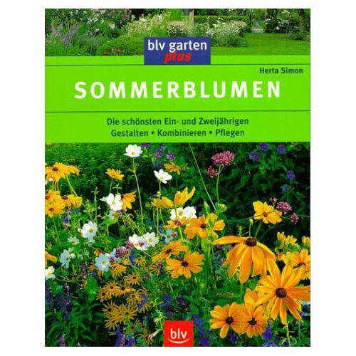 Herta Simon - Sommerblumen - Preis vom 01.03.2021 06:00:22 h