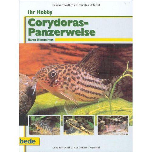Harro Hieronimus - Ihr Hobby: Corydoras-Panzerwelse - Preis vom 20.10.2020 04:55:35 h