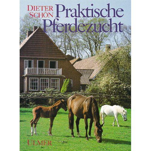Dieter Schön - Praktische Pferdezucht. Sportpferde und Ponys - Preis vom 20.10.2020 04:55:35 h