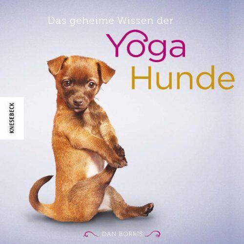 Dan Borris - Das geheime Wissen der Yoga-Hunde - Preis vom 21.01.2020 05:59:58 h