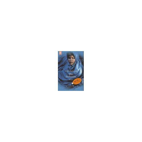 Colin Falconer - Die Sultanin - Preis vom 05.09.2020 04:49:05 h