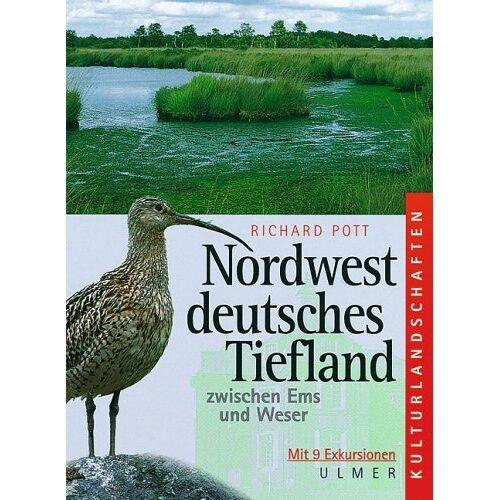 Richard Pott - Nordwestdeutsches Tiefland zwischen Ems und Weser: Ein Exkursionsführer - Preis vom 03.12.2020 05:57:36 h