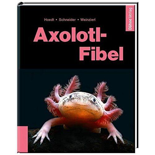 Werner Hoedt - Axolotl-Fibel - Preis vom 19.10.2020 04:51:53 h