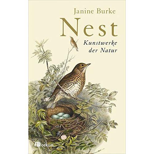 Janine Burke - Nest: Kunstwerke der Natur - Preis vom 22.04.2021 04:50:21 h