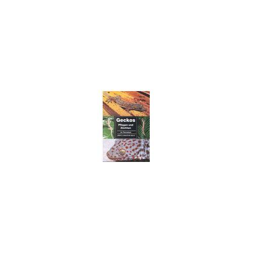 Walls, Jerry G. - Geckos pflegen und züchten im Terrarium - Preis vom 20.10.2020 04:55:35 h