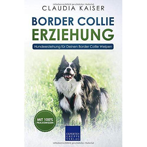 Kaiser Border Collie Erziehung: Hundeerziehung für Deinen Border Collie Welpen (Border Collie Band, Band 1) - Preis vom 13.09.2019 05:32:03 h