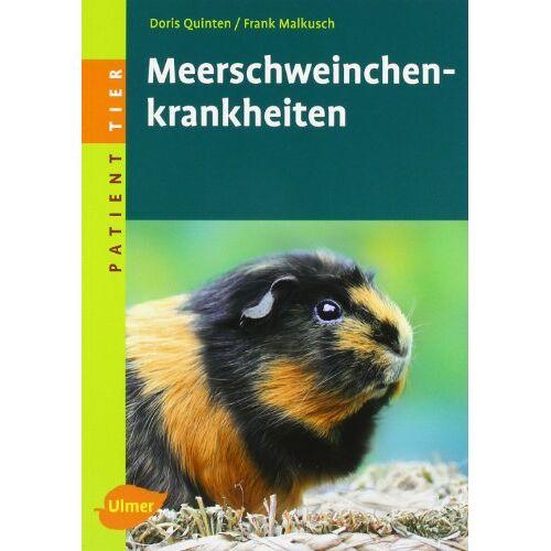 Doris Quinten - Meerschweinchenkrankheiten - Preis vom 25.02.2021 06:08:03 h