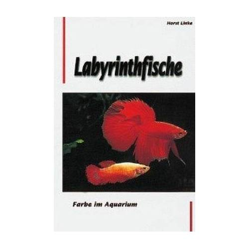 Horst Linke - Labyrinthfische. Farbe im Aquarium - Preis vom 13.04.2021 04:49:48 h