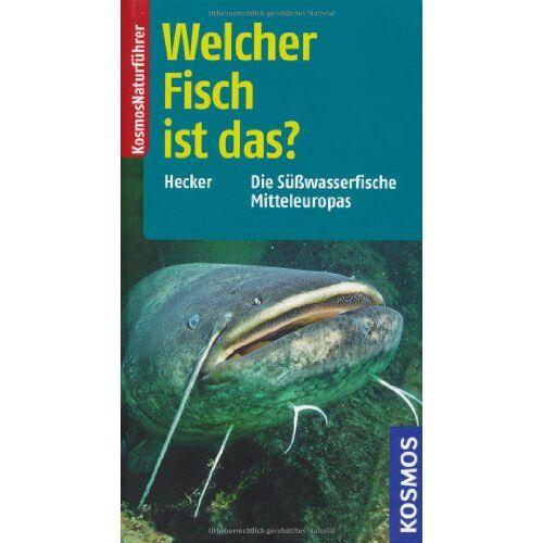 Frank Hecker - Welcher Fisch ist das?: Die Süßwasserfische Mitteleuropas: Die Süsswasserfische Mitteleuropas - Preis vom 28.02.2021 06:03:40 h