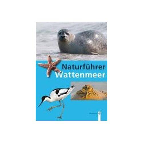 Rainer Borcherding - Naturführer Wattenmeer - Preis vom 06.09.2020 04:54:28 h