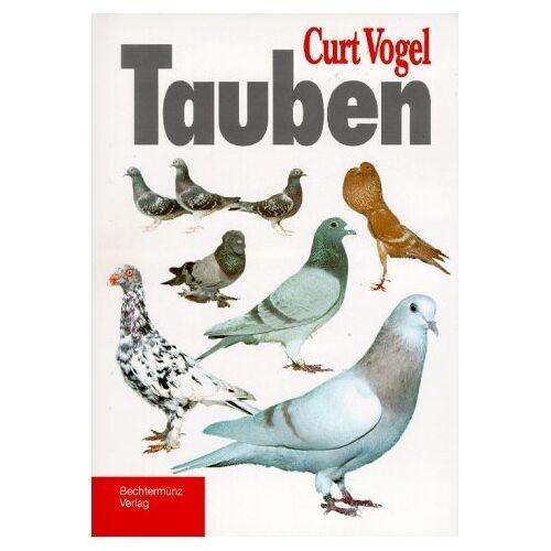 - Tauben - Preis vom 12.04.2021 04:50:28 h