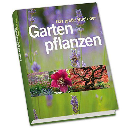- Das große Buch der Gartenpflanzen - Preis vom 06.09.2020 04:54:28 h