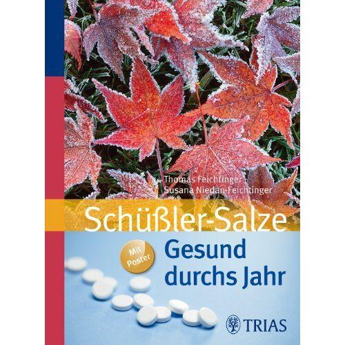 Thomas Feichtinger - Schüßler-Salze: Gesund durchs Jahr - Preis vom 20.10.2020 04:55:35 h