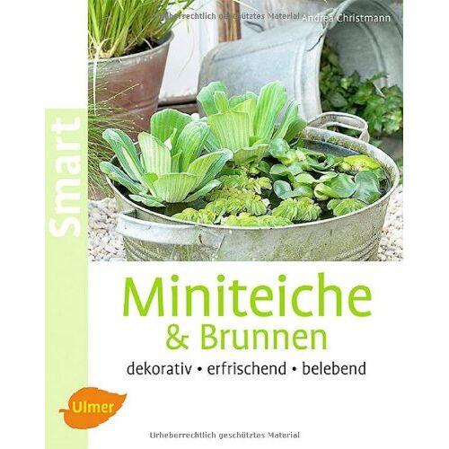 Andrea Christmann - Miniteiche und Brunnen: Dekorativ, erfrischend, belebend - Preis vom 18.10.2020 04:52:00 h