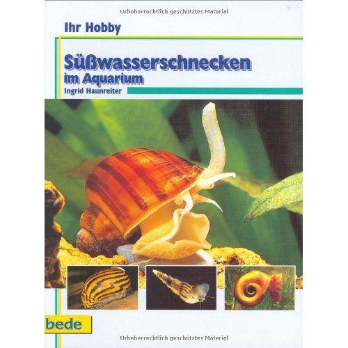 Ingrid Haunreiter - Süßwasserschnecken im Aquarium, Ihr Hobby - Preis vom 11.04.2021 04:47:53 h