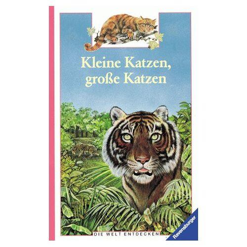 Béatrice Fontanel - Die Welt entdecken: Kleine Katzen, große Katzen - Preis vom 06.05.2021 04:54:26 h