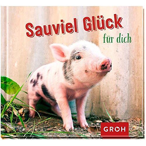 Joachim Groh - Sauviel Glück für dich - Preis vom 01.03.2021 06:00:22 h