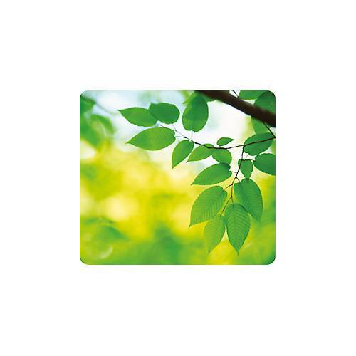 Fellowes Mousepad Earth