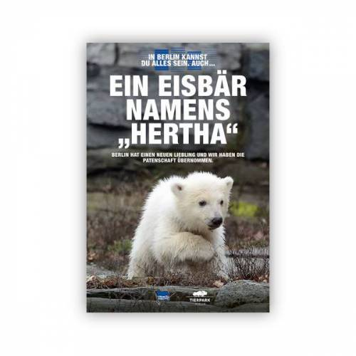 Hertha Poster Eisbär HERTHA A2