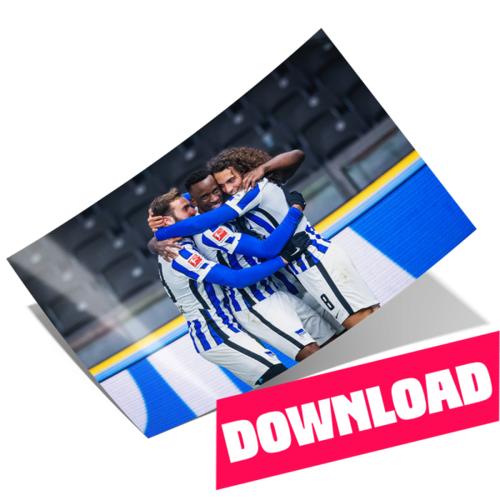 Hertha Poster Jubeltraube Download