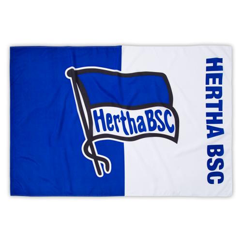 Fahne Logo blau-weiß 60x90 cm ohne Stab