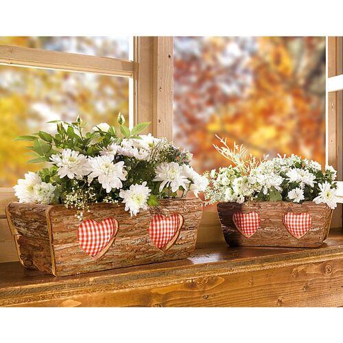 Blumentopf im 2er-Set