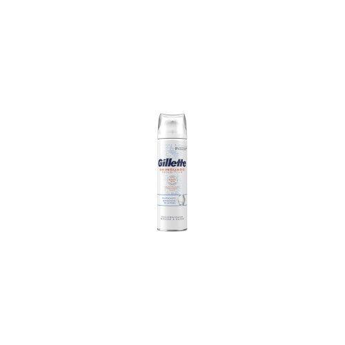 Gillette SkinGuard Sensitive Rasierschaum 250ml