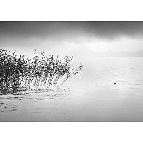 Dekoria Leinwandbild By the Lake II, 50 x 35 cm