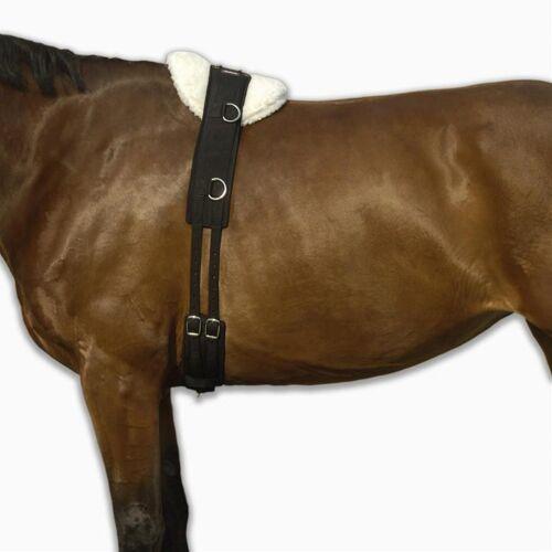 FOUGANZA Longiergurt Pony und Pferd schwarz