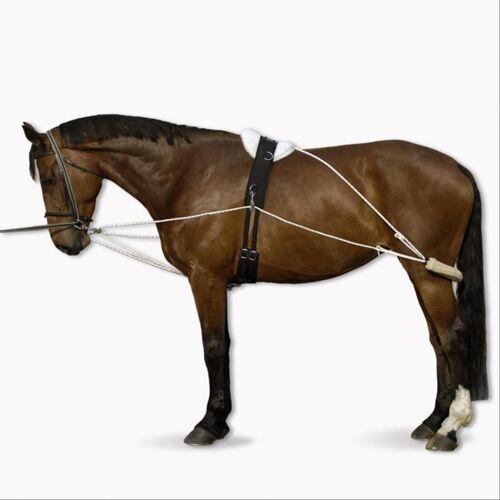 NO BRAND Hilfszügel VS Pferd weiß