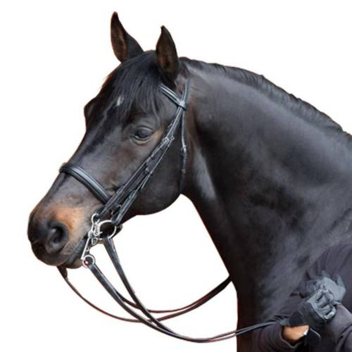 FOUGANZA Kandarenzaum + Zügel Beauvalais Pferd schwarz