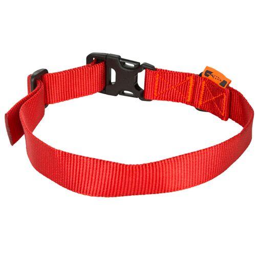 SOLOGNAC Hundehalsband 100 rot