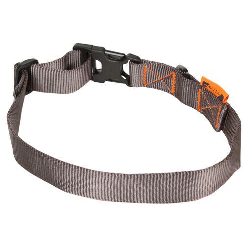 SOLOGNAC Hundehalsband 100 grau GRAU
