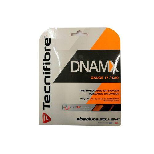 Tecnifibre Squashsaiten TF DNMAX1.2 schwarz