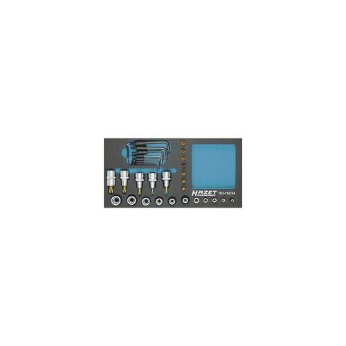 Hazet Steckschlüssel-Satz TORX® 163-192/24, Werkzeug-Set