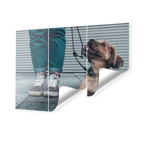 myposter Fototapeten im Format 270 x 180 cm